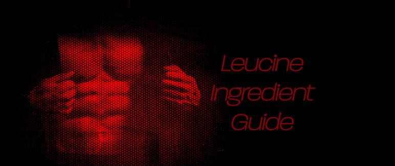 Leucine Ingredient Guide