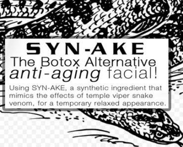 Synake