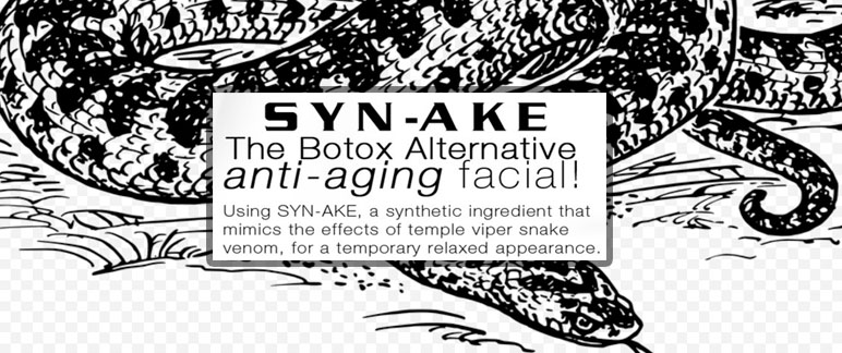 What Is Synake?