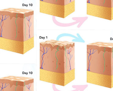 Topical Collagen