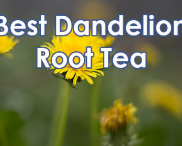 Best Dandelion Root Tea