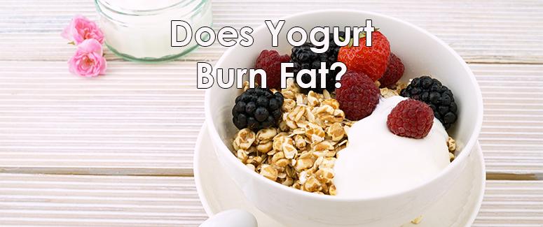 Does Yogurt Burn Fat?