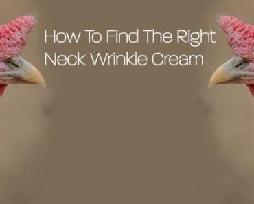 Neck Wrinkle Cream