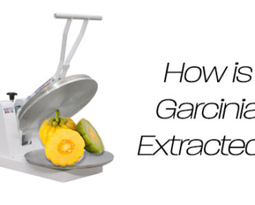 How Is Garcinia Cambogia Extracted