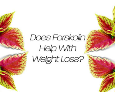 Weight Loss Benefits of Forskolin